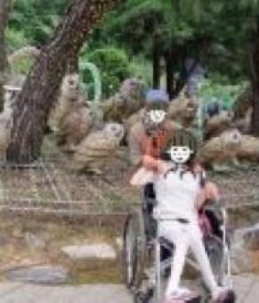 장애인활동지원서비스